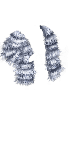 July Silver Coat