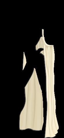 Raja's Bikini  C18