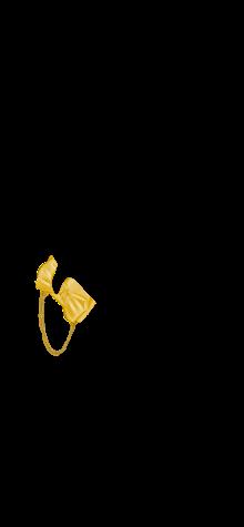 SOLLIE goldie bag