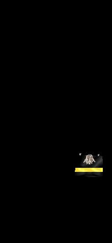 COCO blackyellow2