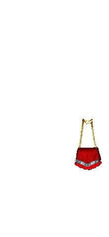 Kinsley purse 6