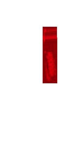 Karma Fur bag 9