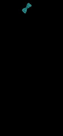 SideBow Aqua