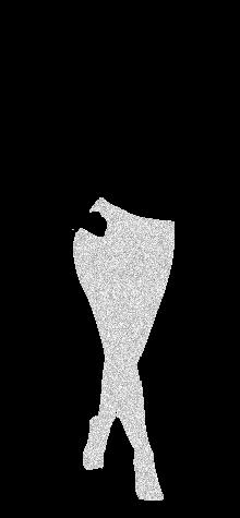 COCO silverglitter