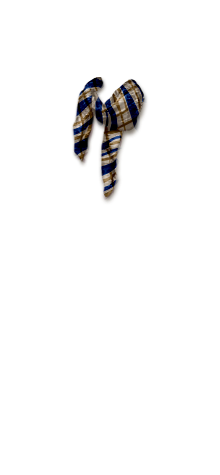 Raja scarf2