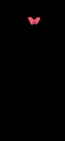Xiumin Pk