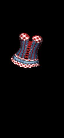 corset top T6