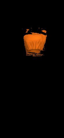 HF TubeTop Orange