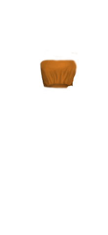 HF TubeTop Camel